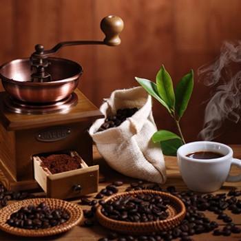 Notre sélection de café